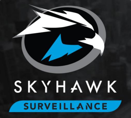 Seagate HDD Skyhawk Surveillance 4TB